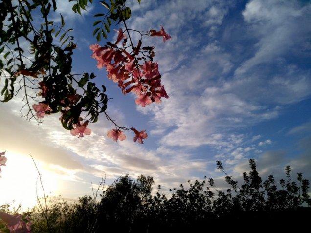 writing-books-writers-inspiration-travel-ibiza